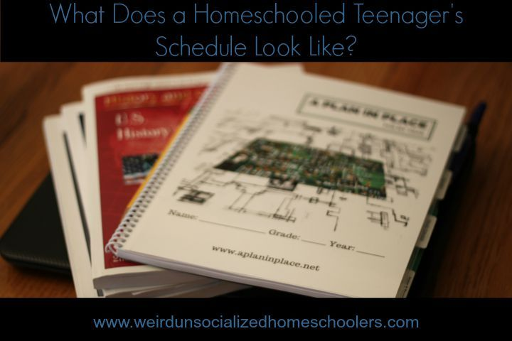 7 best exploring economics images on pinterest high school high what does a homeschooled teenagers schedule look like fandeluxe Gallery