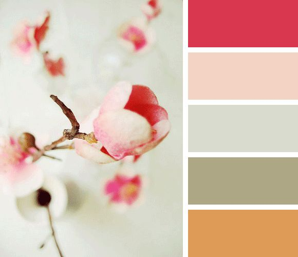 Color palette of the week: Beautiful Flowers
