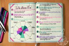 La Vie niveau 10 (ou level 10 life) dans le Bullet Journal