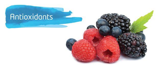 Thumbnail Antioxidants