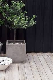 Image result for big grey pots