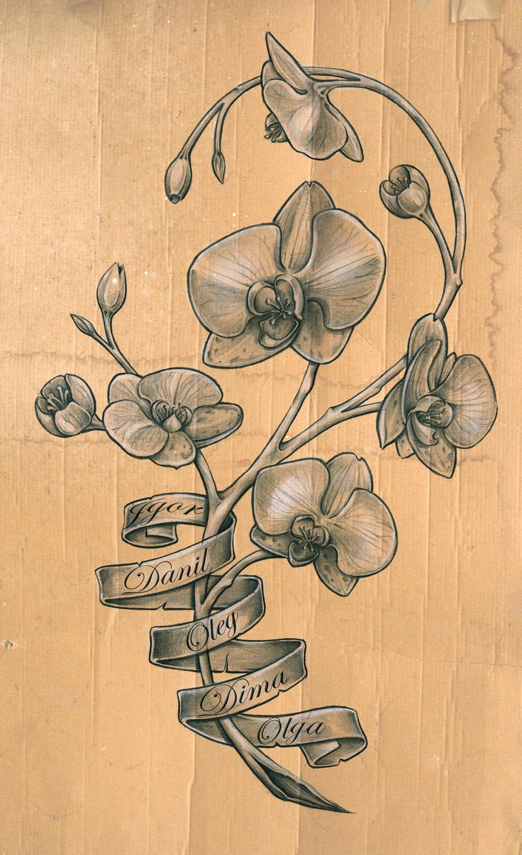 been thinking of getting an orchid tattoo for the longest time.. whats stopping me? the painnnnnnn