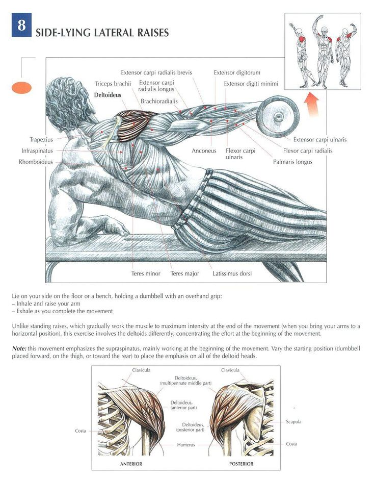Side Lying Lateral Raises