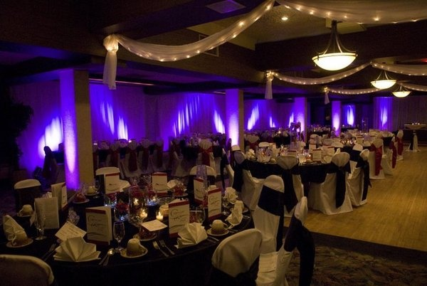 lighting: Photos, Reception 3, Up Lights, Receptions 2012, Receptions Lights, Lighting, Lights Purple, Parties Ideas, Bright Lights