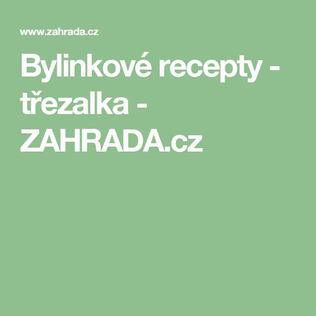 Bylinkové recepty - třezalka - ZAHRADA.cz
