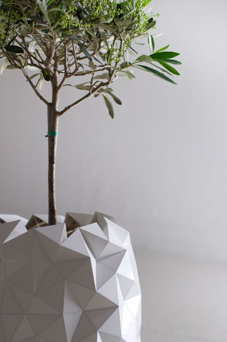 Growth - Origami based planter. Expands with plant