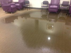 The extent of the water damage on the above flooded and wet carpet is different, however, the restoration process is always similar.  Water is extracted from the carpet, driers are set up to blow cold air into the carpet to dry it and also the underlay and subfloor.