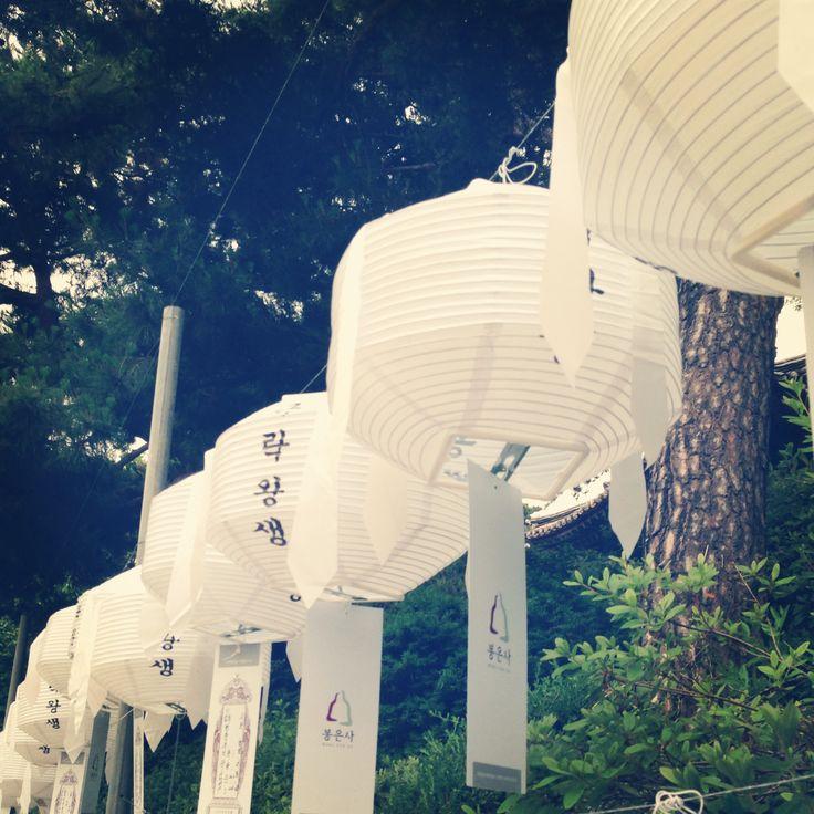 Korea, lampion, lantern