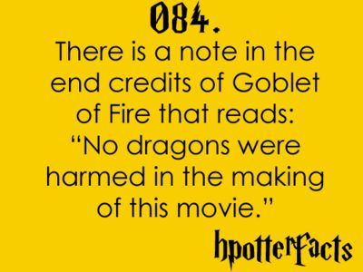 Harry Potter facts : Awesome, Hpfact, Dragon, Mischief Management, Hp Facts, Movie, Harry Potter Facts, Facts 84, Watches