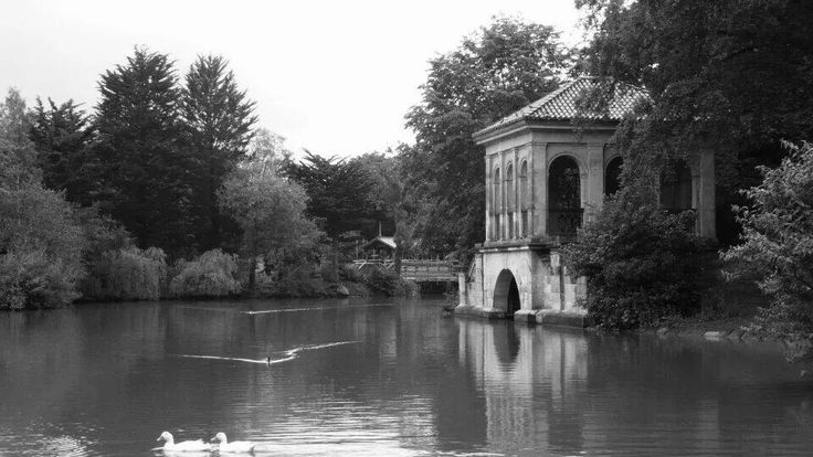 Black and white lakeside