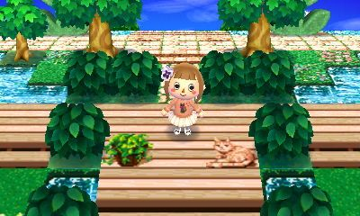 Acnl Qr Code Paths Pattern Wood Deck Forest Life