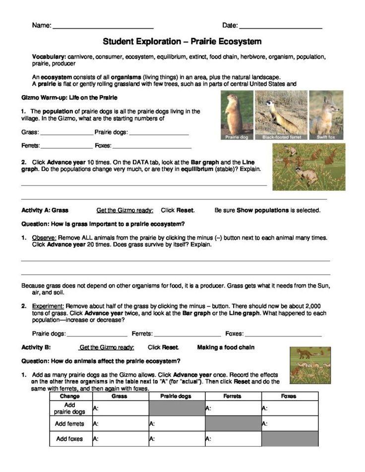 Prairie Ecosystems - GIZMO - www.explorelearning.com ...