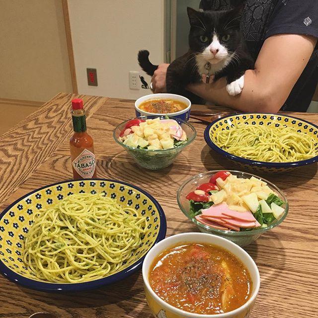 今週は帰省したり外食したりでちゃんとご飯作れてないのでお久しぶりの #おうちごはん 。 実家からトマトを貰ってきたので #チキンのトマト煮 作りました。 バジルパスタはコストコのバジルペーストです。 いただきます♫  #猫#ねこ #cat #ねこ部 #元野良猫 #保護猫 #黒猫 #デブ猫 #愛猫 #日本猫 #はちわれ #クロ #tuxedocat #catstagram #おうちごはん #晩ごはん #今日はイタリアンな気分