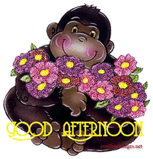 Good Afternoon Comments Facebook Myspace Orkut Graphics Glitters Styles