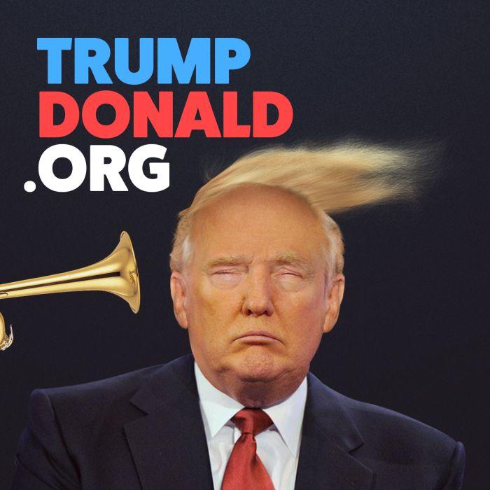 interactive website donald trump combover blowing