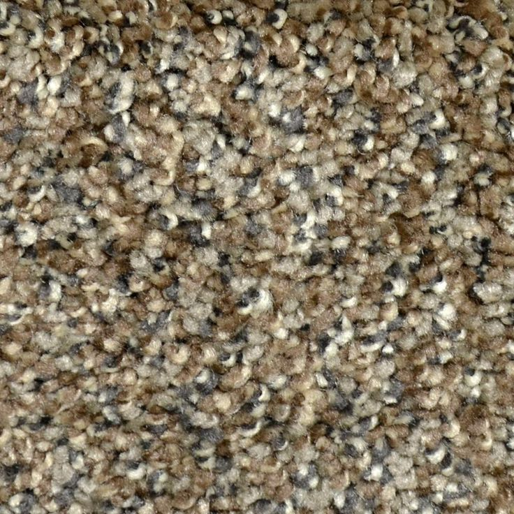 LifeProof Carpet Sample - Graceful Style I - Color Clifton Texture 8 in. x 8 in.-EF-298601885 - The Home Depot
