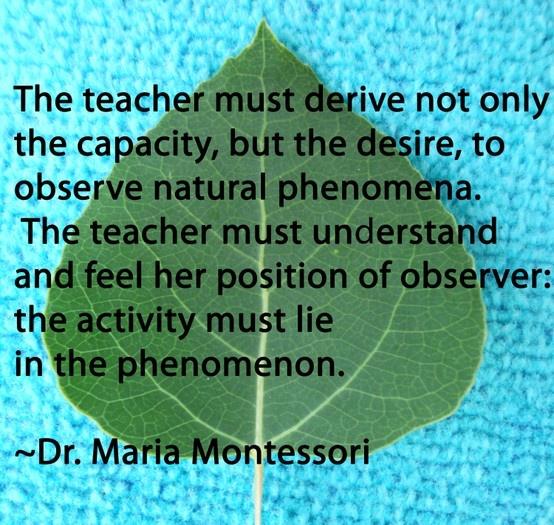 40 best Montessori Quotes! images on Pinterest | Montessori quotes ...