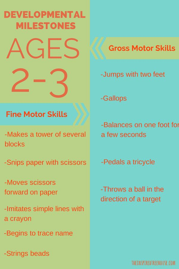 2 and 3-Year-Old Milestones | Children: Developmental Activities |  Preschool, Childhood education, Activities
