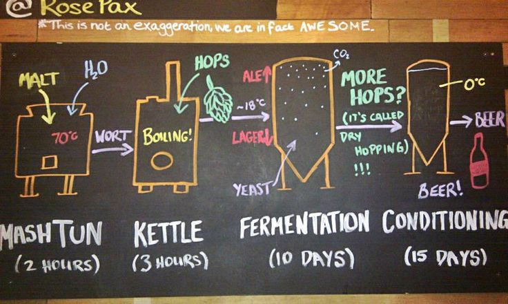 Beer making process