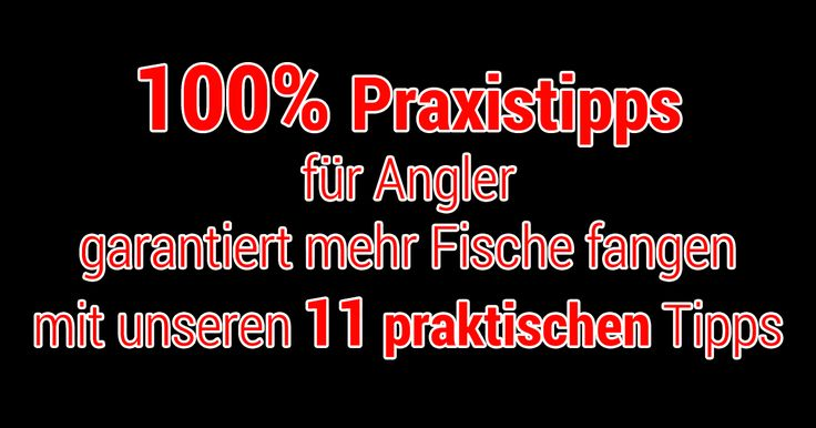 100% Praxistipps für Angler.