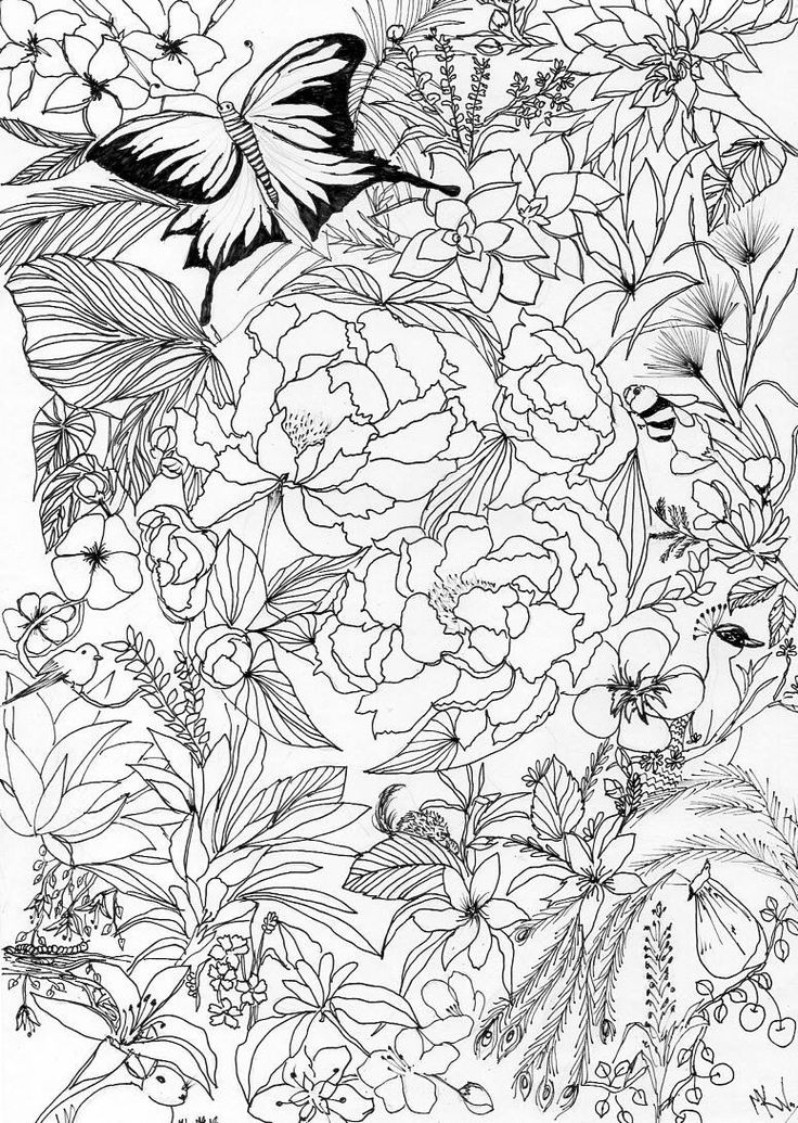 My #drawing #enchanted #garden done after a long time