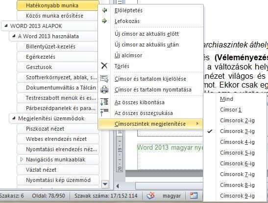 word_2013_navigalas_panel_1.jpg