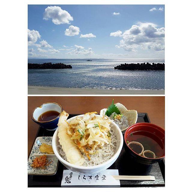 【kinoco_no_ki】さんのInstagramをピンしています。 《・ 今日のお昼ごはん🍚 ・ 伊方町のしらすパークへ🚗💨 たっぷりの釜揚げしらすの上にしらすのかき揚げと蟹の天ぷらがのったしらす丼 生しらすも追加で注文😁 ・ キラキラと光る綺麗な海を見ながらいただきました😋✨ ・ ・ #お昼ごはん #しらす丼 #生しらす #愛媛県 #伊方町  #佐田岬の鬼 #しらすパーク #海 #宇和海 #海の見える食堂》