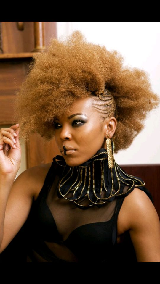 ... Hairstyles 1000+ images about hair on pinterest black women natural