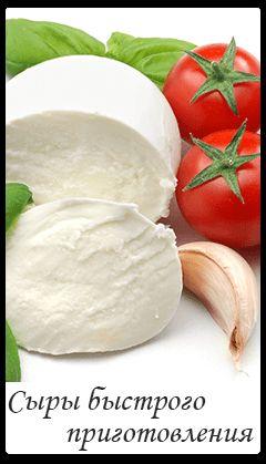 Купить закваски для Моцарелла, Фета, Сулугуни, Зернистый сыр, Сыр Косичка