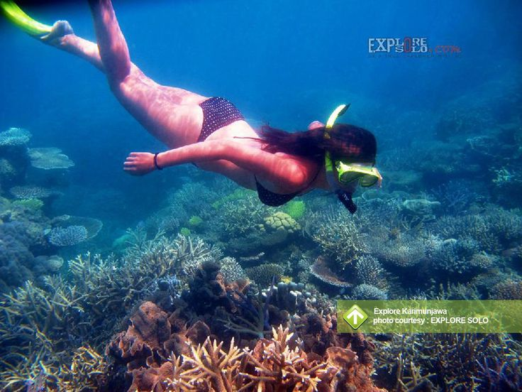 Explore Karimunjawa September 7 - 10, 2013 Link : http://triptr.us/tk