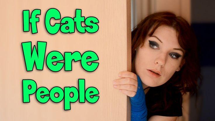 If Cats Were People | ErinRachel