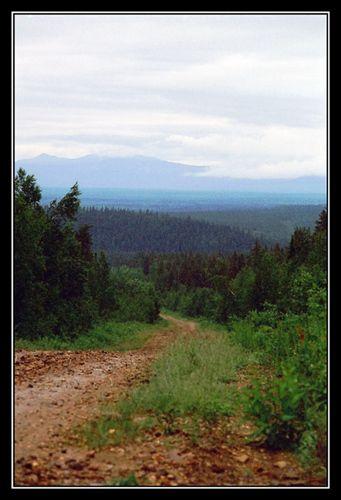 Дорога на Вишеру