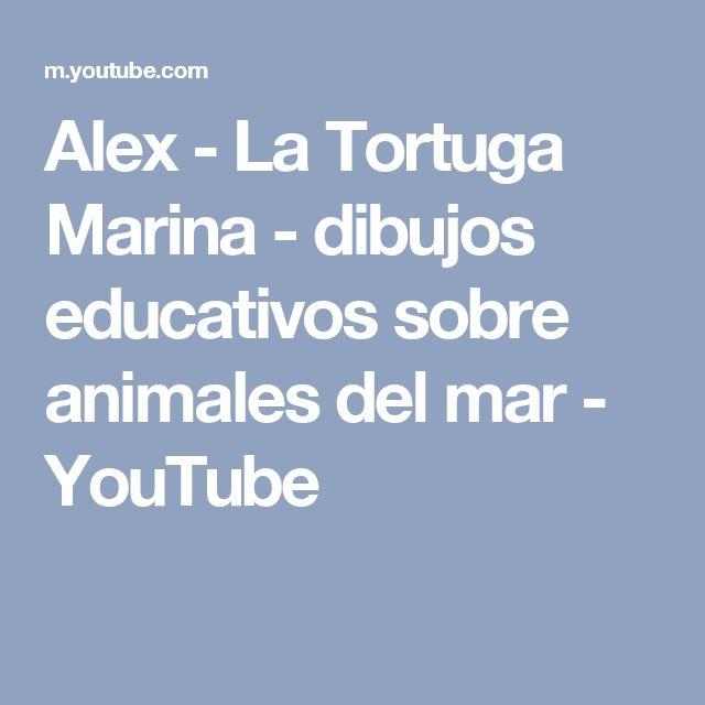 Alex - La Tortuga Marina - dibujos educativos sobre animales del mar - YouTube