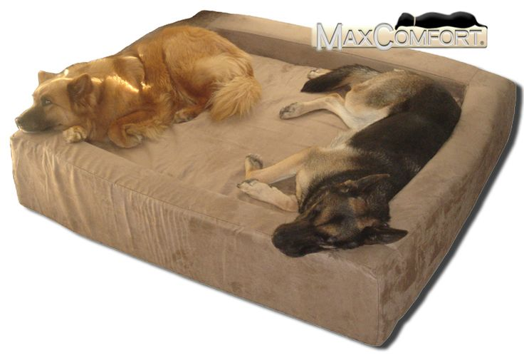Comfort Nest Dog Bolster Bed.      I would love to be able to get this for the girls.