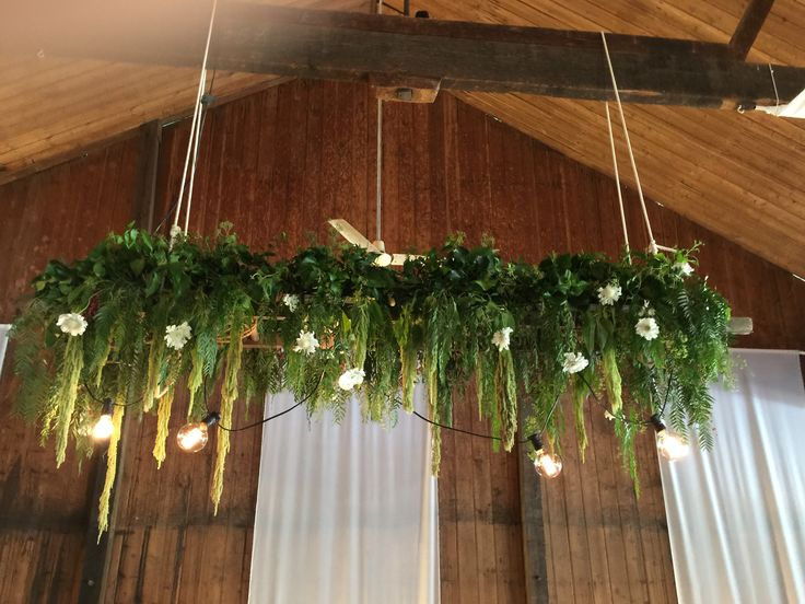 Hanging plank on vintage ladder bridal table. Wedding glen ewin estate South Australia. Flowers by Ivy and lace flowers