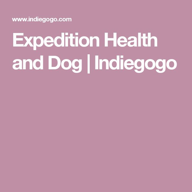 Expedition Health and Dog   Indiegogo