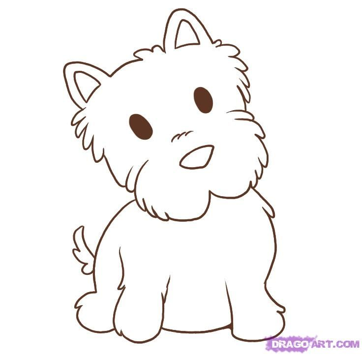 how to draw a westie step 5 | How to draw puppies ...