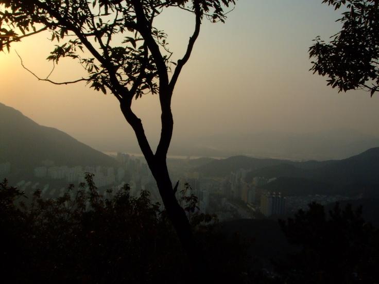 Fotophest! Busan Pixelated