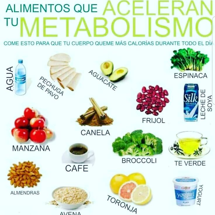 metabolismo hidrocarbonado bajo Mentalidad