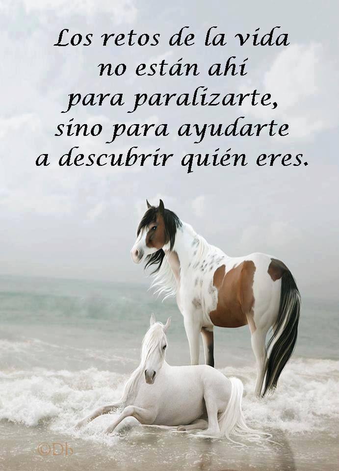 Los retos de la vida no están ahí para paralizarte..