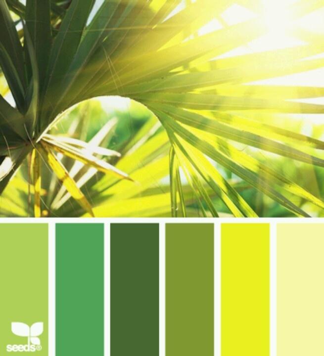 Harmonie vert feuille de palmier I Design I Couleur I Inspiration I Camaïeu I Peinture I