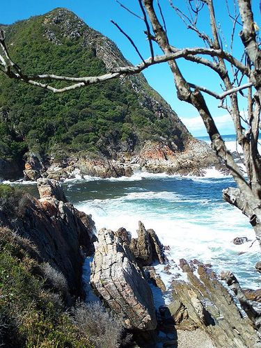 Tsitsikamma National Park, Garden Route.