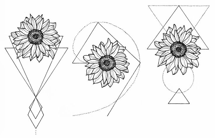 WTKE ON INSTAGRAM ( @sofia_finardi ) sketching | tattoo | sunflower | tattoos | geometrictattoo | geometry | circle | fineline | fineart | minimal | d…