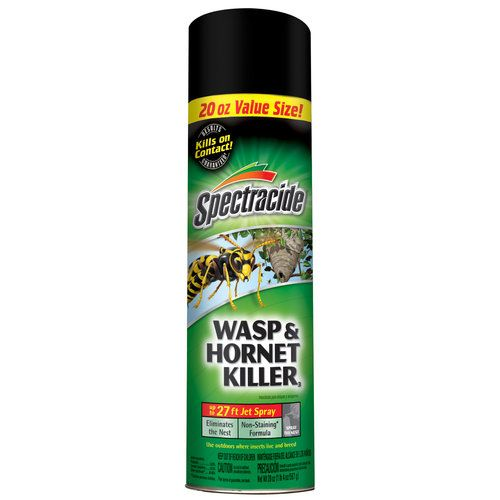 Spectracide Wasp and Hornet Aerosol Spray, 20 oz, Multicolor