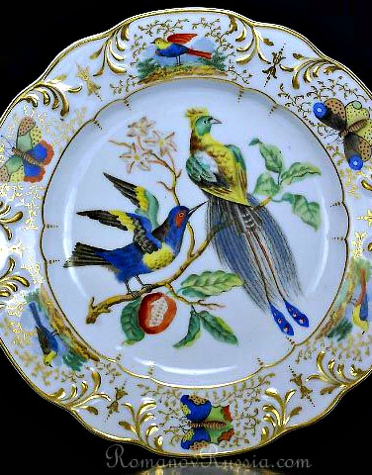 Russian porcelain ornithological plate, the Imperial Porcelain Factory, period of Nicholas I (1825-1855), painted with two birds on a branch, border with molded gilt scrolls and reserves painted with butterflies and birds.