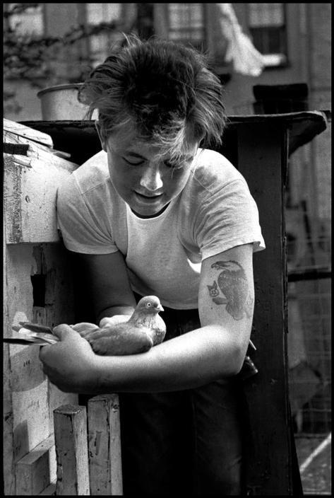 Bruce Davidson, Brooklyn Gang, New York, USA, 1959.  https://www.pinterest.com/pin/503840277041957459/