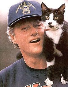 Clinton + Socks