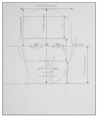 Drawing Basics: Proportions of the Head