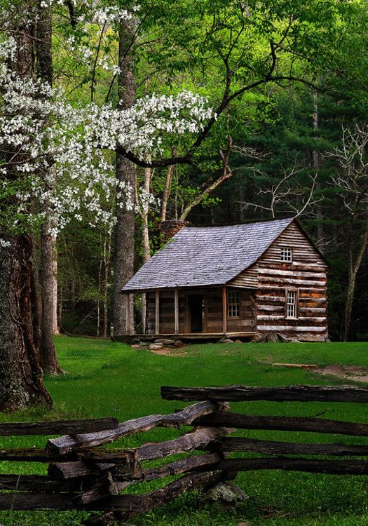 Cabin #logcabincelebrity