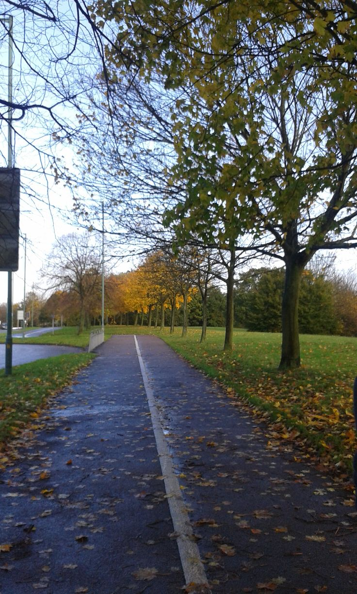 The Autumn in Harlow Town :)